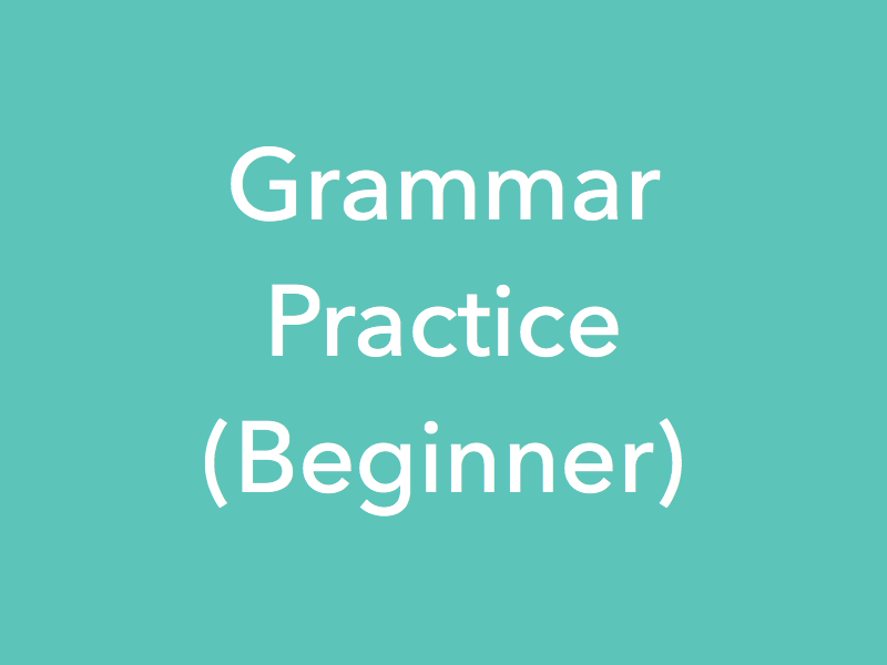 Study Material Content for 'Grammar Practice Lessons - Beginner'